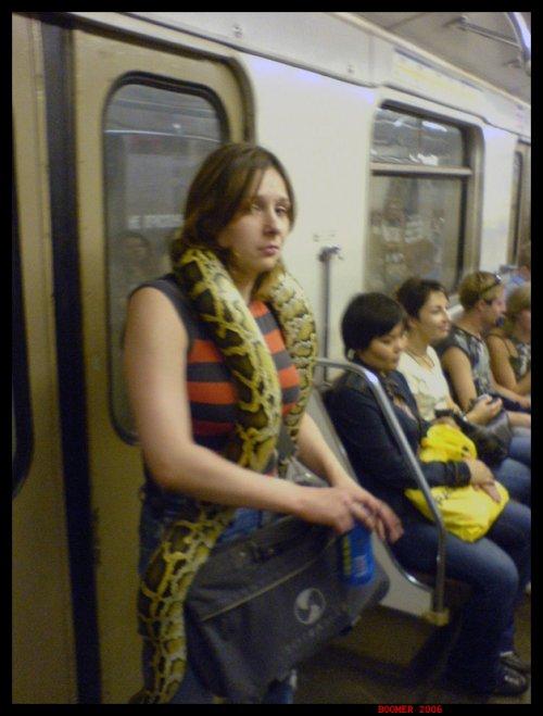 С удавом в метро