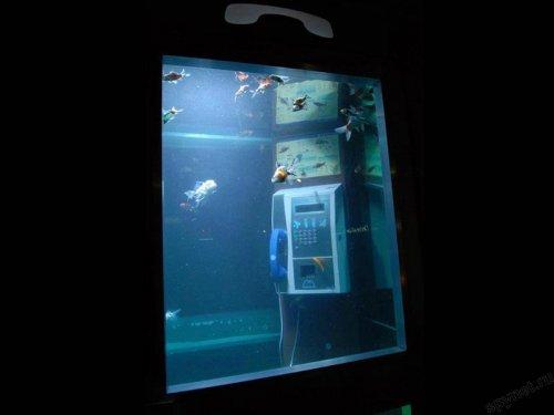 Телефон-аквариум
