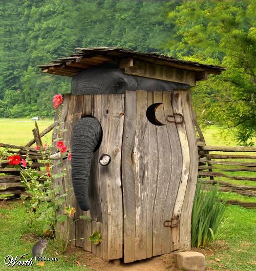 Как спрятать слона?