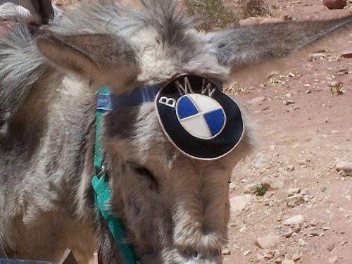 Экологически чистый автомобиль :))