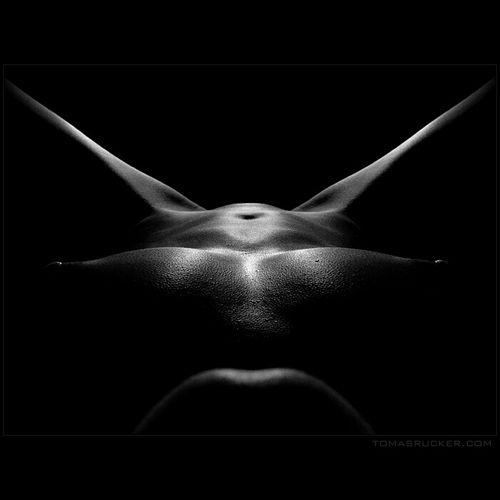 Девушки: эротические позы